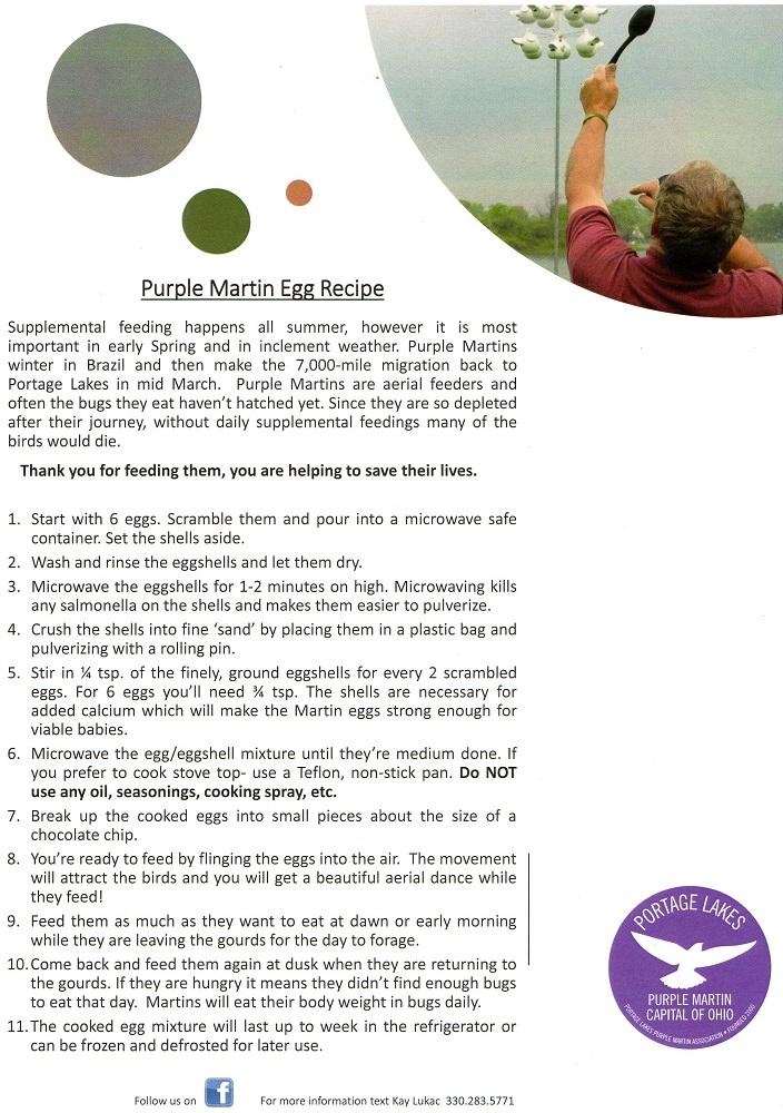 Purple Martin Scrambled Egg Recipe
