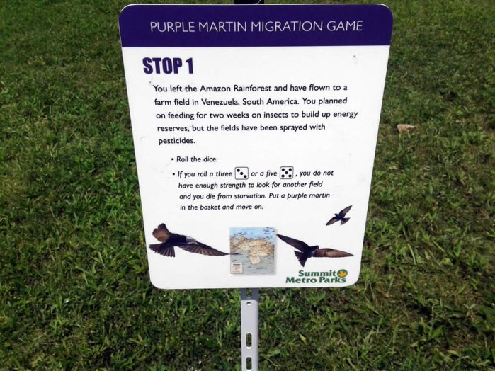 Purple Martin Obstacles 1