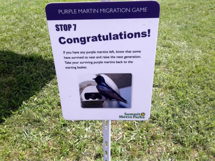 Purple Martin Obstacles 7
